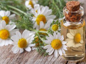 chamomile essential oils in aerial yoga